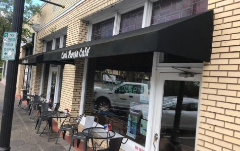 Cool Moose Cafe Review