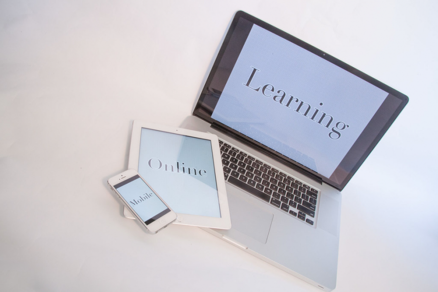 National+Online+Learning+Concerns